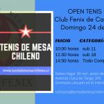 Open de Tenis de mesa Club Fenix